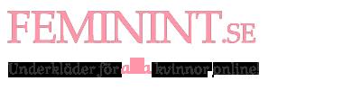Feminints blogg – feminint.se